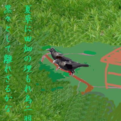 odakakarasuu1.jpg