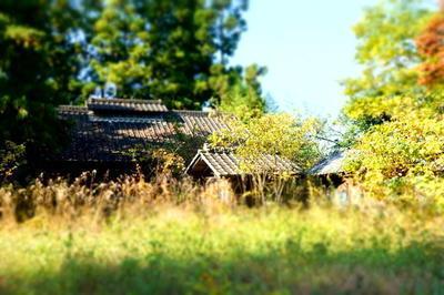 ooharaakiya2222.jpg