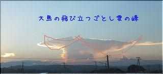 ootorikumo11.jpg