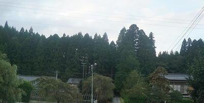 oyamadaway4.jpg