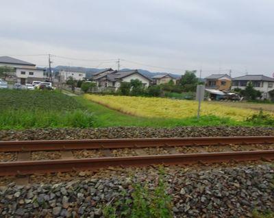 railwayrrr6.JPG