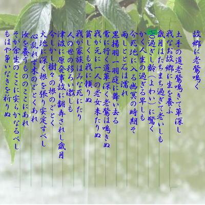 rainpoemnew.jpg