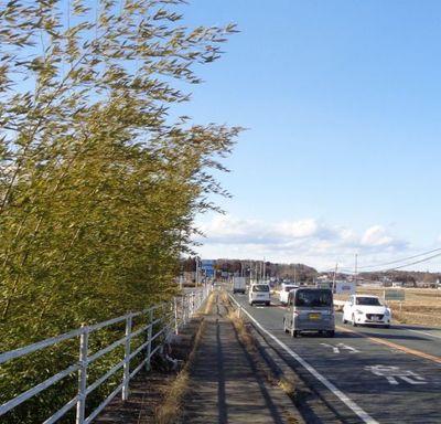 roadstationn1.jpg