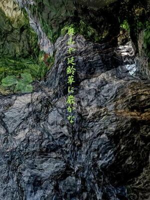rockway111.jpg