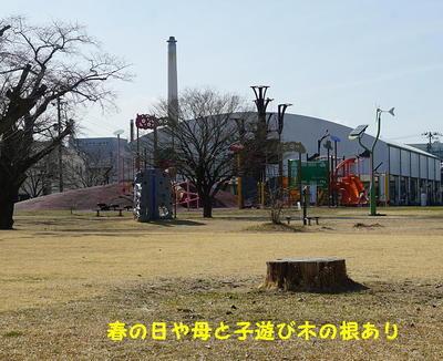 roottree.jpg