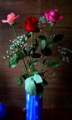 rosephoto55.jpg