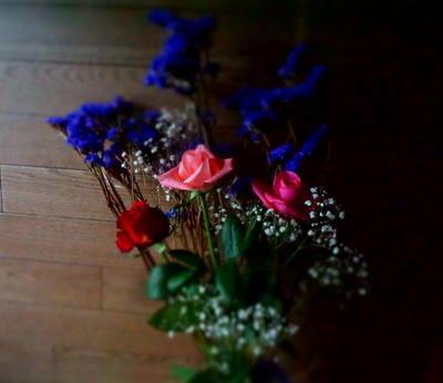 rosethreeee44.jpg