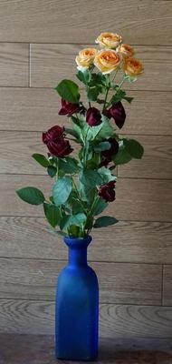 rosetwocolour11.jpg