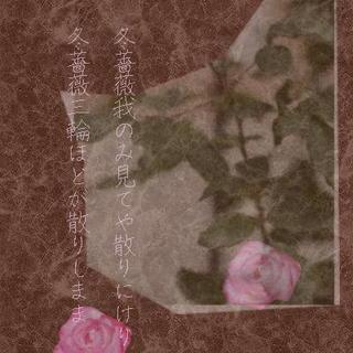 rosewinnn1212123.jpg