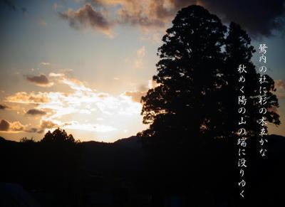 sagiuchiiii123.jpg