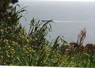 seashipfff111.jpg