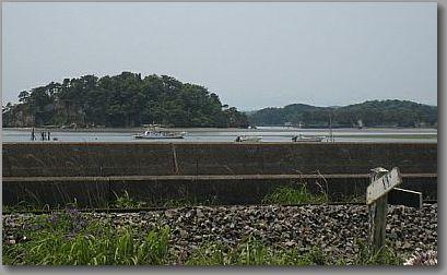 shimaoku123.jpg