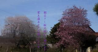 shimokurennn1234_FotoSketcher.jpg