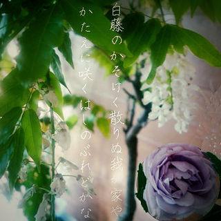 shinoburedooooo12344.jpg