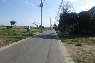 shirahagiiii1.jpg