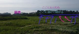 shiroshoubuuu12345.jpg