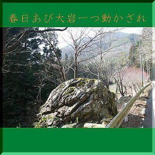 shiwaishiii1111-thumbnail2[1].jpg