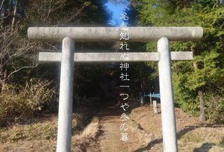 shurainnn111.jpg