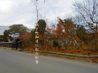 somamatufuyumomiji444.jpg
