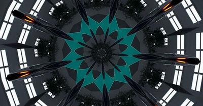 spaceflower6.jpg