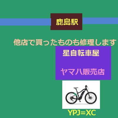 starcicle111122.jpg