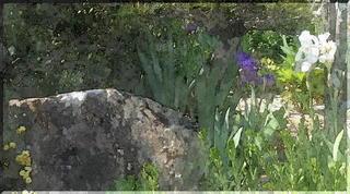 stoneayameeee1_FotoSketcher.jpg