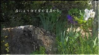 stoneayameeee1_FotoSketcher3.jpg