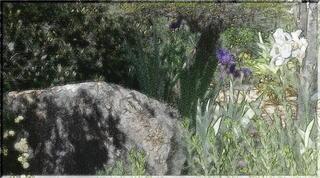 stoneayameeee1_FotoSketcher4.jpg