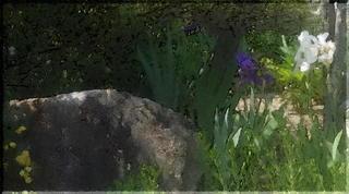 stoneayameeee1_FotoSketcher5.jpg