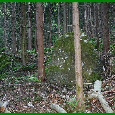 stonemoss11121.jpg