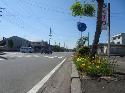 streetnewwww123459.jpg
