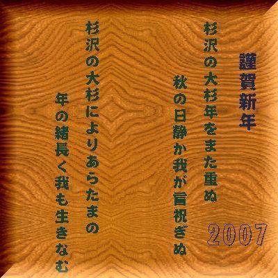 sugisawa1.jpg