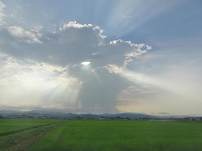 summercloud111.jpg