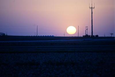 sunsss2.jpg