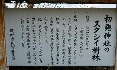 sutashiii111.jpg