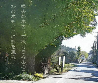 suwaki1.jpg