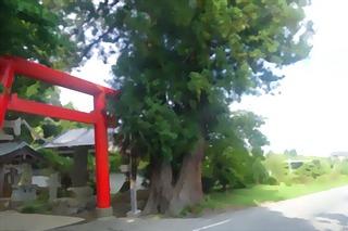 suwasugiiii123_FotoSketcher333.jpg