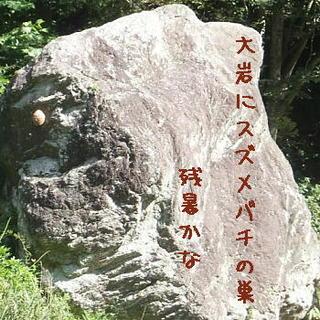 suzume3333.jpg