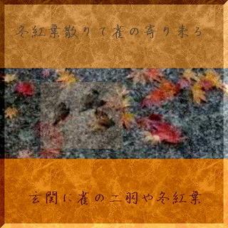 suzumeee1111.jpg