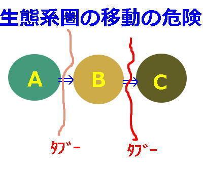 tabooo1.jpg