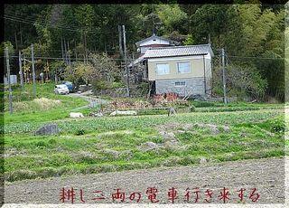 tagayashiiii123.jpg