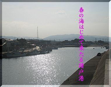 tanashiooooooo1222.jpg