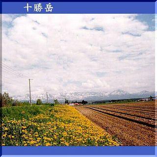 tocachiiiiii111.jpg