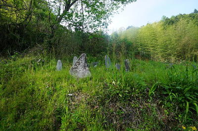 tombgrass8.jpg
