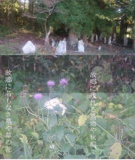 tombs111.jpg