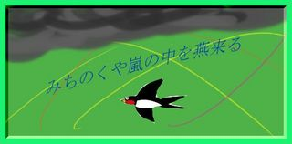 tubamearashi11.jpg