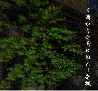 tukiwaka333.jpg
