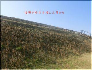 tukushiii111.jpg