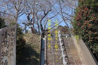 ukifunrrr1234.jpg