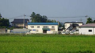 umakusa1.jpg